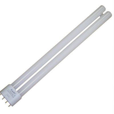 bulb-lightbox